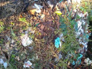 VIGILÂNCIA SANITÁRIA I Descarte ilegal de lixo encontrado no centro da cidade