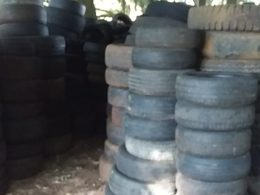 SAÚDE I Dia 28 de abril teremos recolhimento de pneus usados no Parque Armídio Bertani