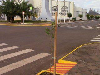 Prefeitura faz o plantio de árvores na Av. Duque de Caxias